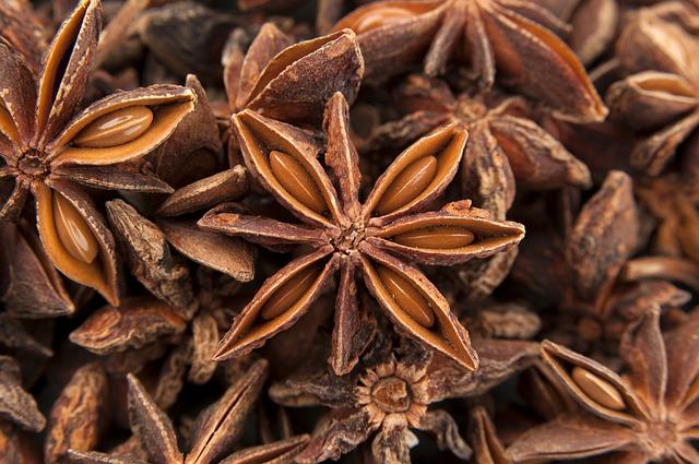 anis etoil au comptoir des plantes et des tisanes phytoth rapie aromath rapie. Black Bedroom Furniture Sets. Home Design Ideas